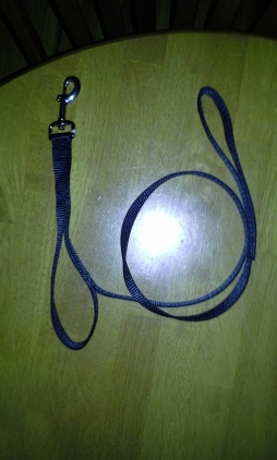 Double Loop Leash
