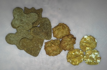 Left to Right - Buckwheat Pumpkin Treats, Banana Peanut Butter Treats, Phoebe Treats (My Own Concoction)