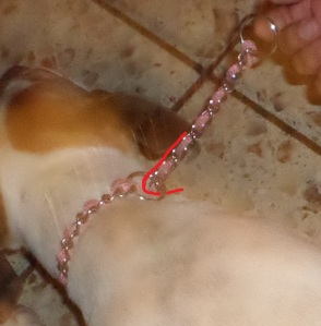 Figure 3:  WRONG- If the chain wraps back, it will not release easily. It is on backwards; and dangerous.