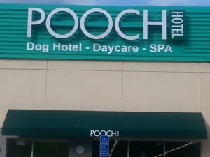 The front of the Pooch Hotel