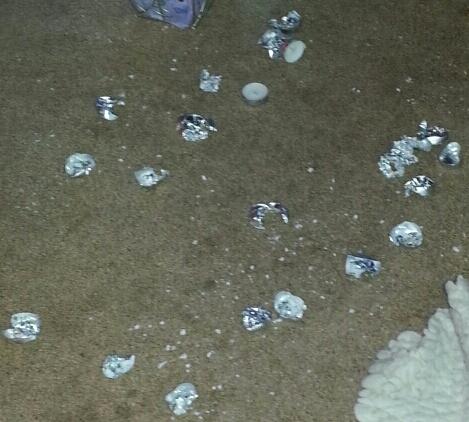 My dog ate candle wax Part II (1/4)