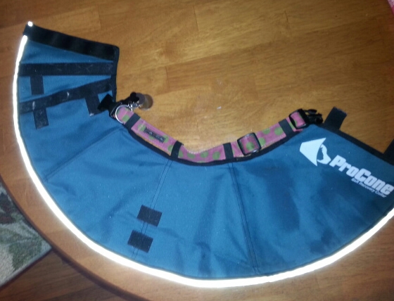 Surgery Collar - My Review of the Contech Pro Collar (2/6)