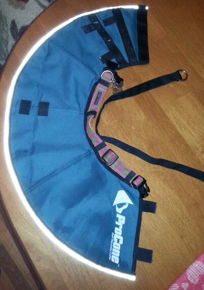 Surgery Collar - My Review of the Contech Pro Collar (1/6)